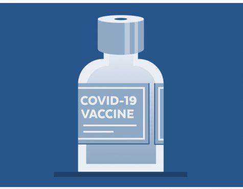 Coronavirus 2nd Spike